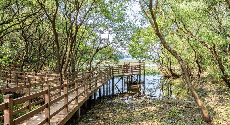 죽동마을 생태학습장의 끝은 다시 군산 호수와 만난다.