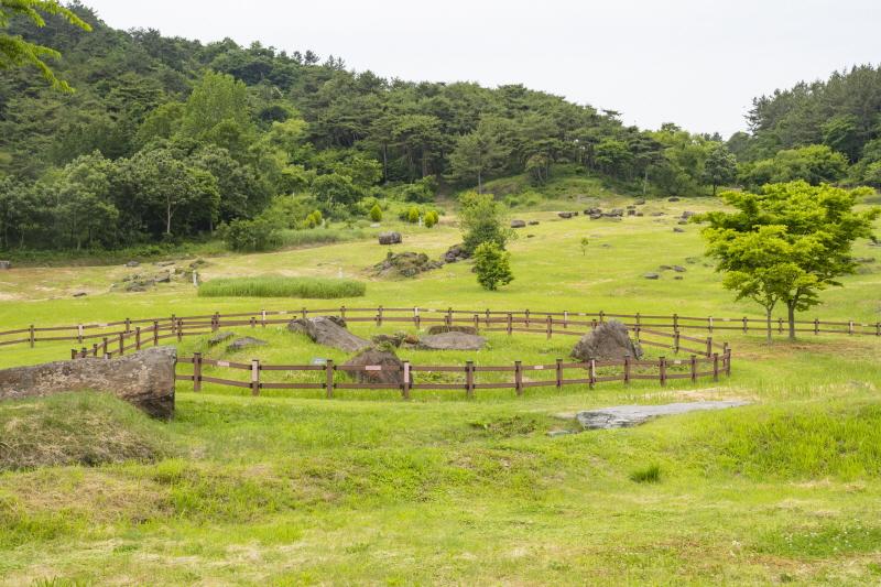 생태탐방의 종착지인 고창 고인돌공원